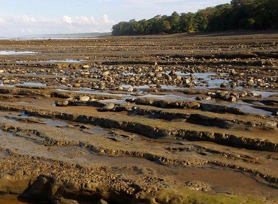 Drake Bay, Costa Rica: Playas impresionantes en el Corcovado National Park