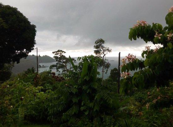 Vistas al Drake Bay al lado de Martina´s Place