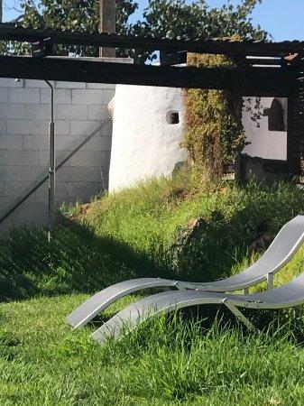 Sao Bartolomeu, Portugal: Grass + furniture....