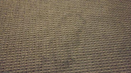 Ontario, OR: vuil tapijt