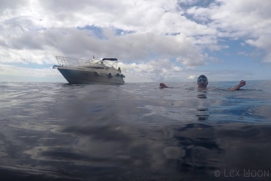 Calheta, Portekiz: My husband swimming in the sea with the boat in the background (Copyrighted)