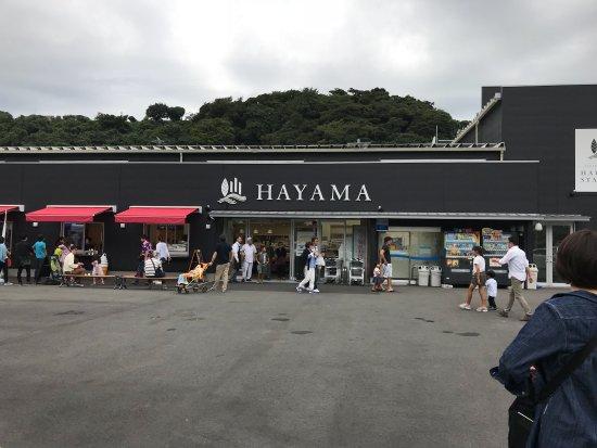 Hayama-machi, Japan: 葉山ステーション