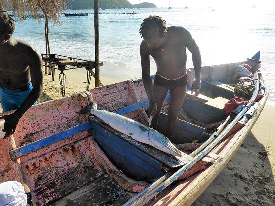 Gros Islet, Sta. Lucía: retour de peche