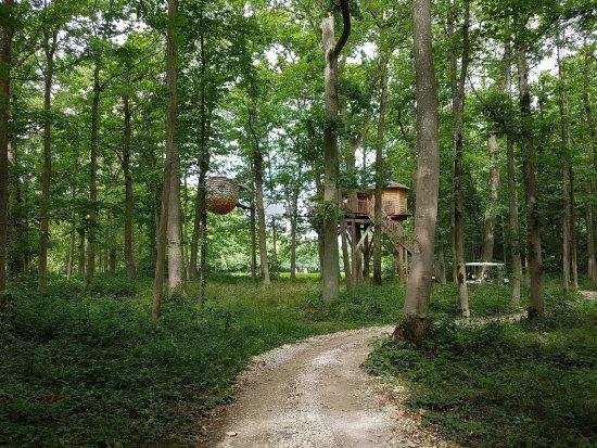 Coucoo Grands Chenes: Les Cabanes des Grands Chênes
