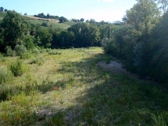 Piacenza, Italy: Il Tidone in secca