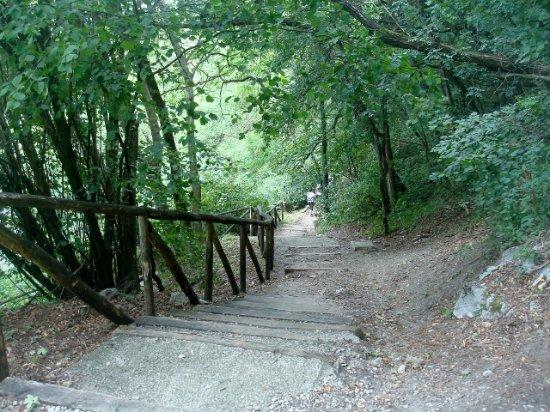 Piacenza, Italy: Un tratto del sentiero