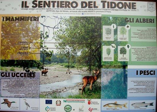 Piacenza, Italy: Utile pannello esplicativo