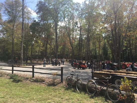 Cookeville, TN: Such a neat campground located just across from the entrance of Cummins Falls State Park. Cleanl