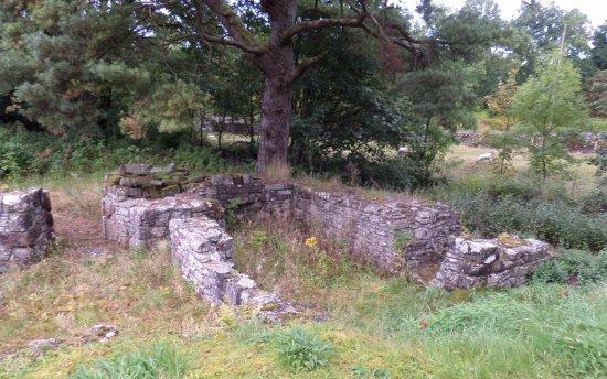Ravenstonedale, UK: St Oswald's Monastery ruins