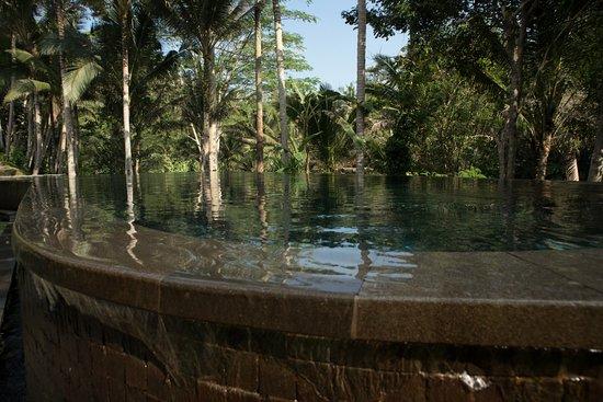 คายูมานิส อุบุด ไพรเวท วิลล่า แอนด์ สปา: Main pool; nobody there