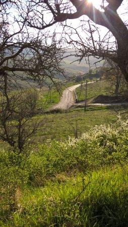 Cancellara, Italia: suggestioni di luci