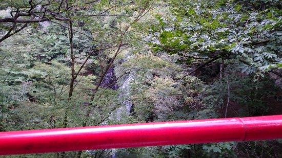 Midori, ญี่ปุ่น: けさかけ橋から見た小中大滝