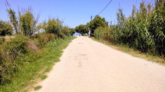 Chrispy World: Path from hotel to beach