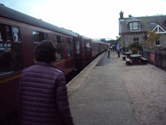Aviemore, UK: The train at Aveimore station