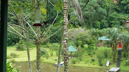 Nuevo Arenal, Costa Rica: A magical place for a meal!