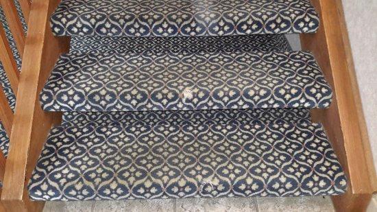 Hudsonville, MI: Filthy torn rugs.