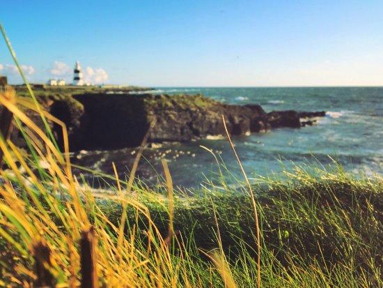Arthurstown, Irland: photo4.jpg