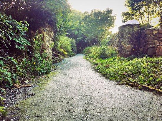 Arthurstown, Ireland: photo7.jpg