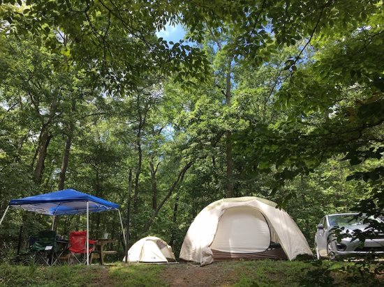 Chilhowee Campground