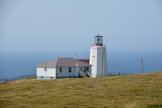 St. Bride's, Canada: 2017-09-14 Cape St. Mary's Ecological Reserve