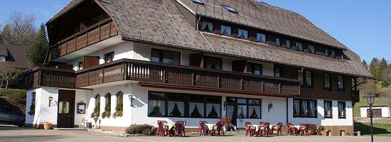 Waldshut-Tiengen, Deutschland: l'esterno dell'hotel