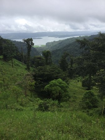 El Castillo, Costa Rica: La Gavilana Herbs and Art