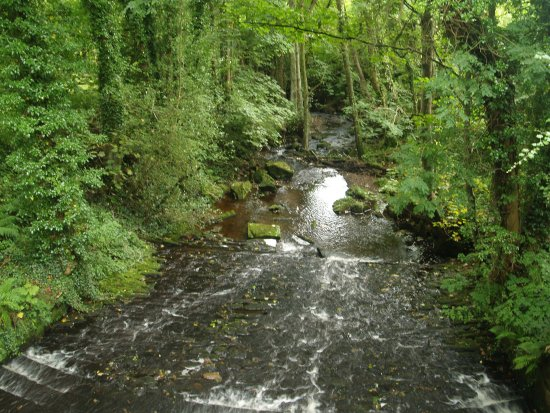 Osmotherley, UK: Cote Ghyll Caravan & Camping Park