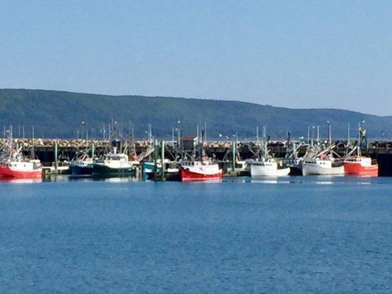 Pretty Digby marina