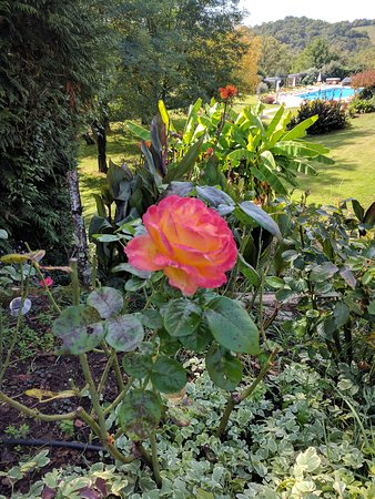 Tamnies, France: Jardin des merveilles