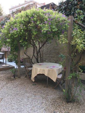 Zdjęcie Nice Garden Hotel