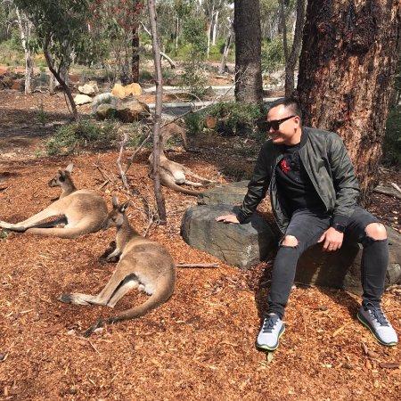 Greater Perth, Australia: photo9.jpg