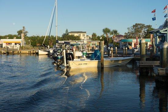 Holmes Beach, FL: Anna Maria Fishing Charters