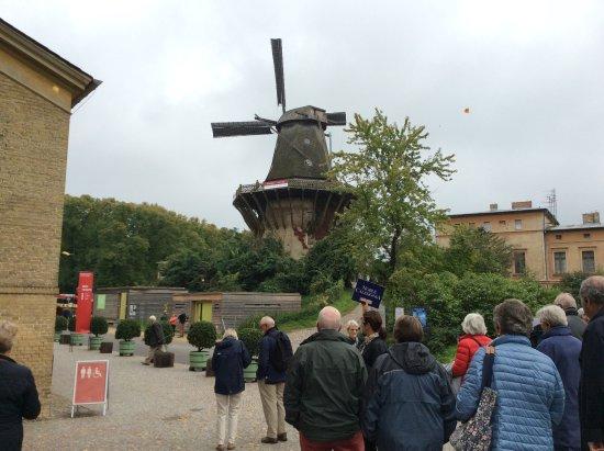 Sanssouci Palace: The neighbouring windmill.