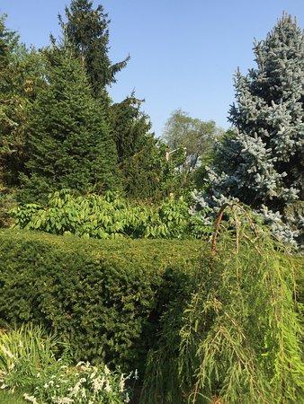 Sunken Gardens: photo7.jpg