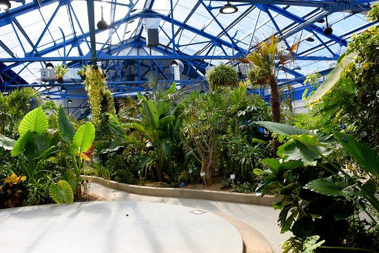 Insectarium and Butterfly Pavilion
