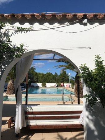 Sunset Oasis Ibiza Photo