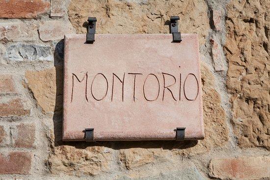 مونتوريو: dettaglio