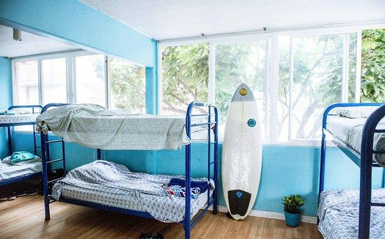 Polynesian Hostel Beach Club Au 52 2019 Prices Reviews