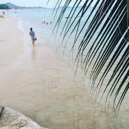 Seahorse Residence: пляж Чавенг Ной