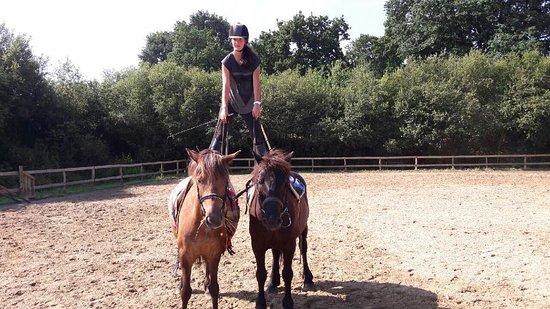 Ferme Equestre Zaldika