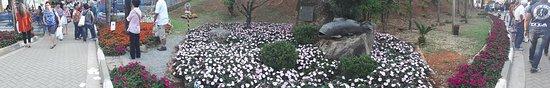 Festa de Flores e Morangos de Atibaia: 20170917_162711_large.jpg