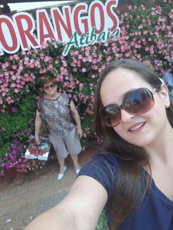 Festa de Flores e Morangos de Atibaia: 20170917_184650_large.jpg