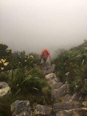 Cape Town, Sydafrika: fog