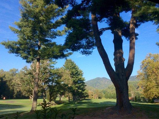 Peppertree Maggie Valley : photo0.jpg