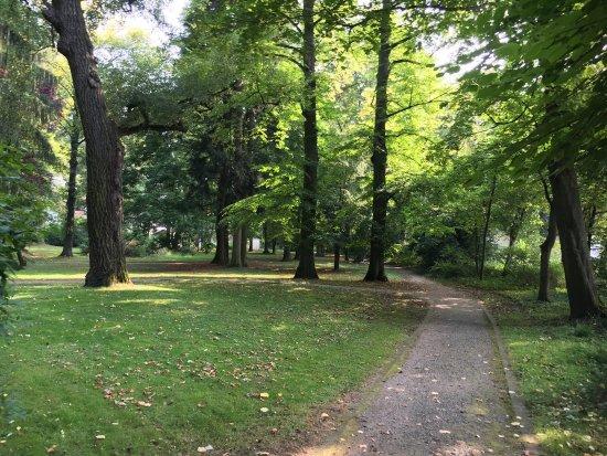 Der Liederbacher Park