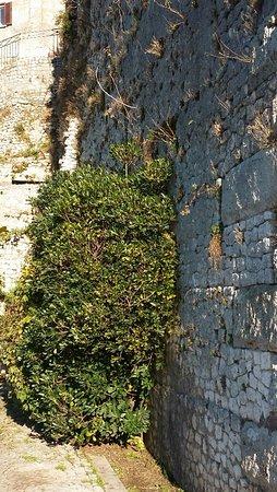 Segni, إيطاليا: resti delle possenti mura ciclopiche con integrazioni moderne