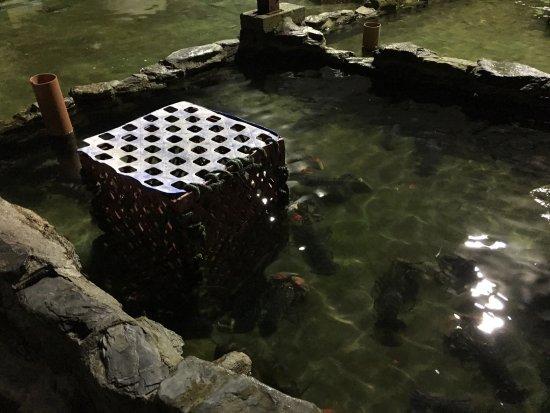 The Boathouse: photo4.jpg