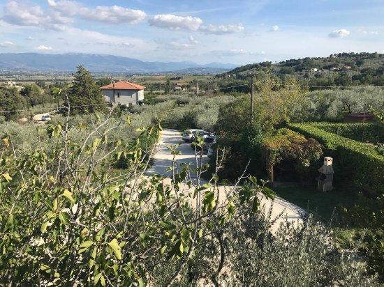 Cannara, Italia: dalla camera