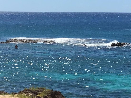 Is Virginia Beach Good For Snorkeling
