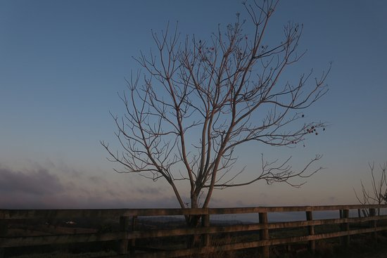 Balmoral Ridge, Australia: photo4.jpg